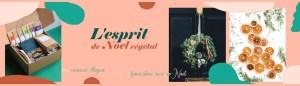 échoppe végétale, esprit de noel végétale, cadeaux éthiques et worshop diy décoration de noel
