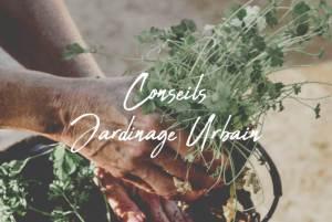 conseils jardinage urbain au naturel