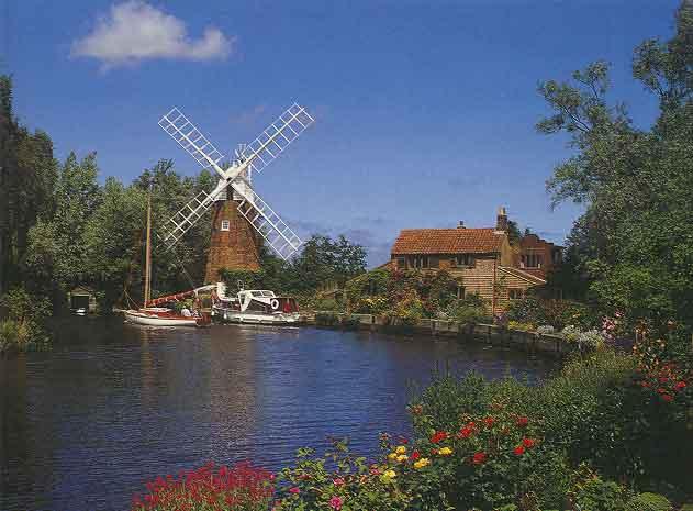 beautiful windmills
