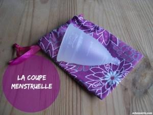 Coupe menstruelle- Diva Cup- echosverts.com
