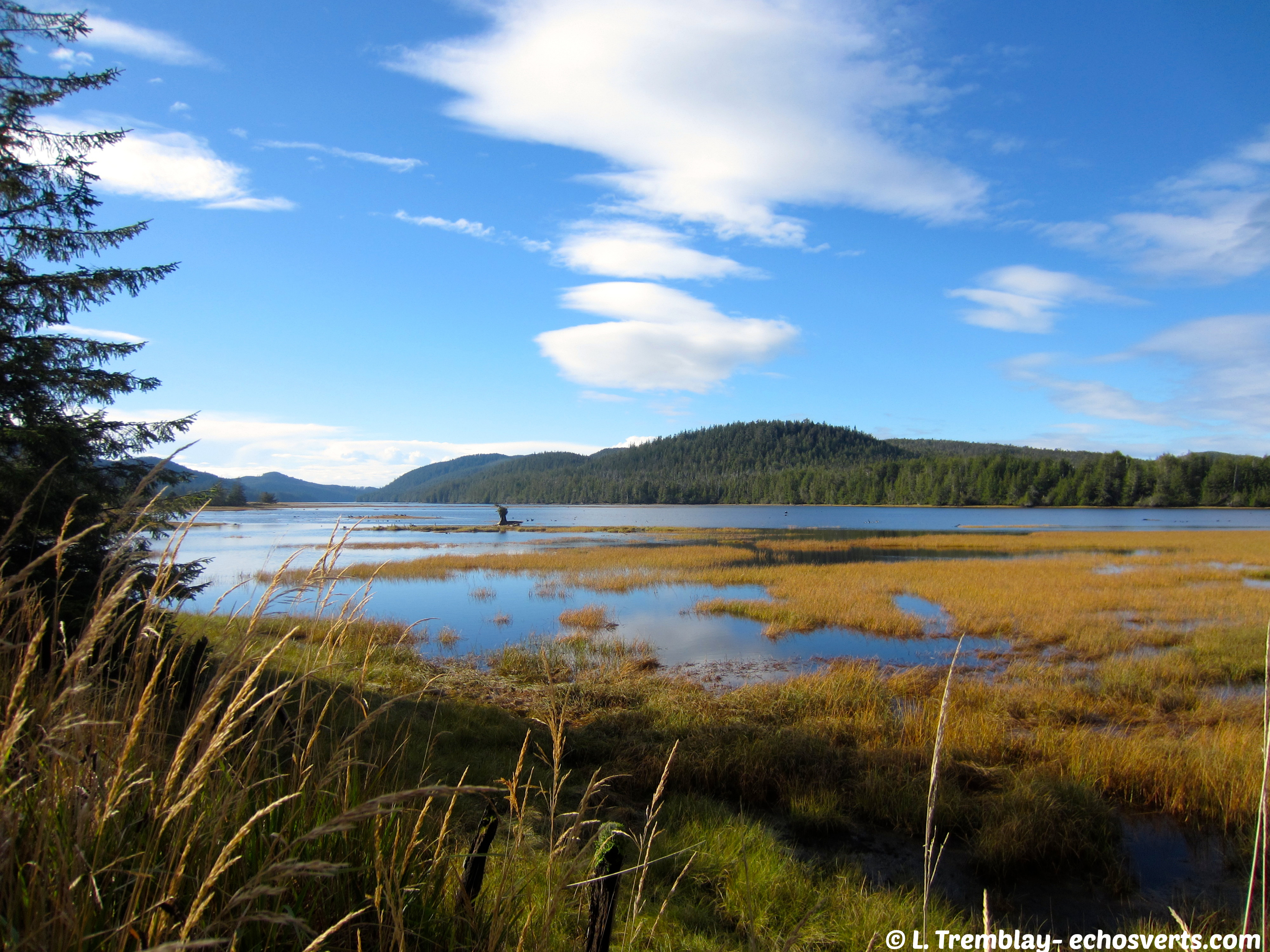 Cape Scott- Ile de Vancouver- copyright- Tremblay- échos verts