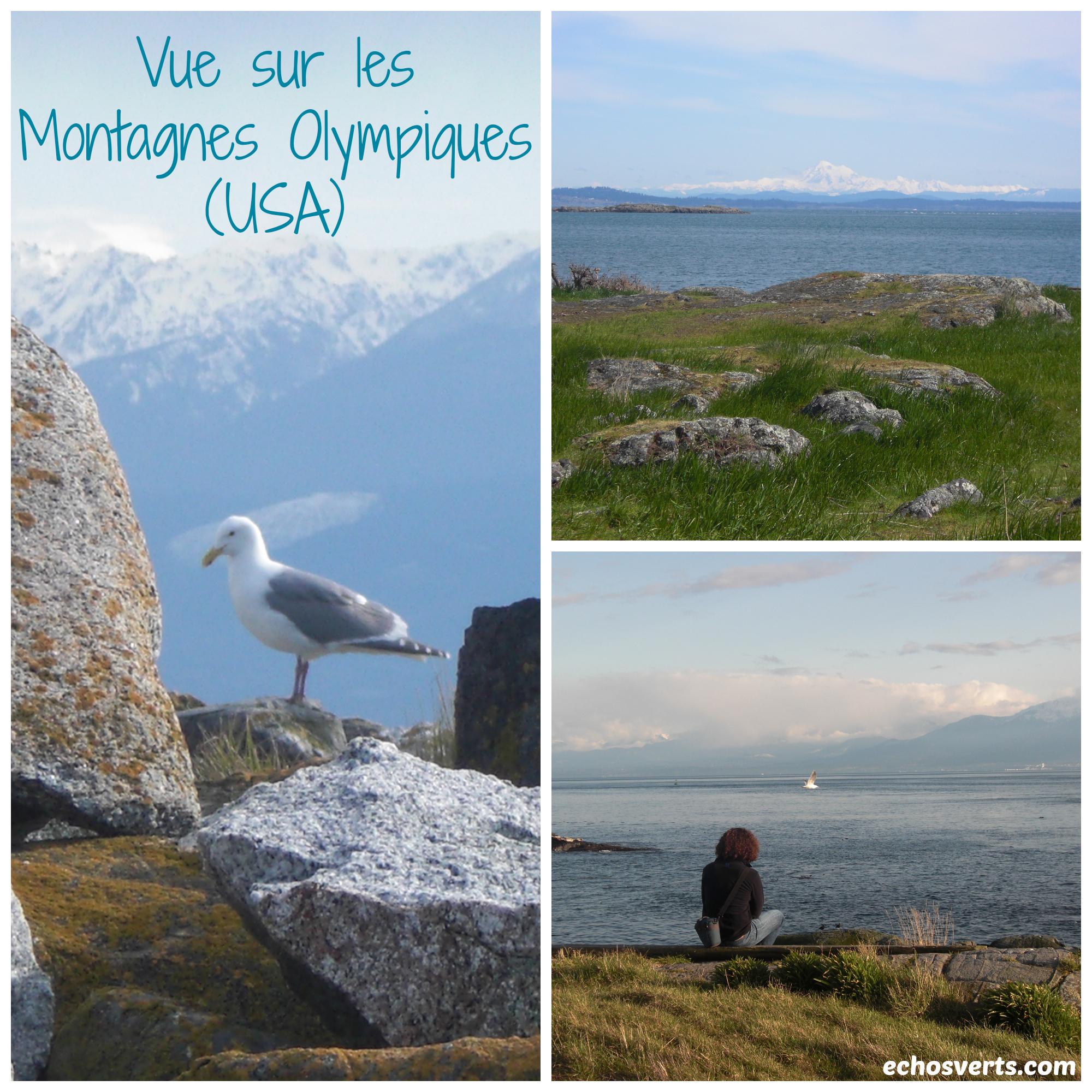 Vue sur les montagnes Olympiques- copyright- échos verts.jpg