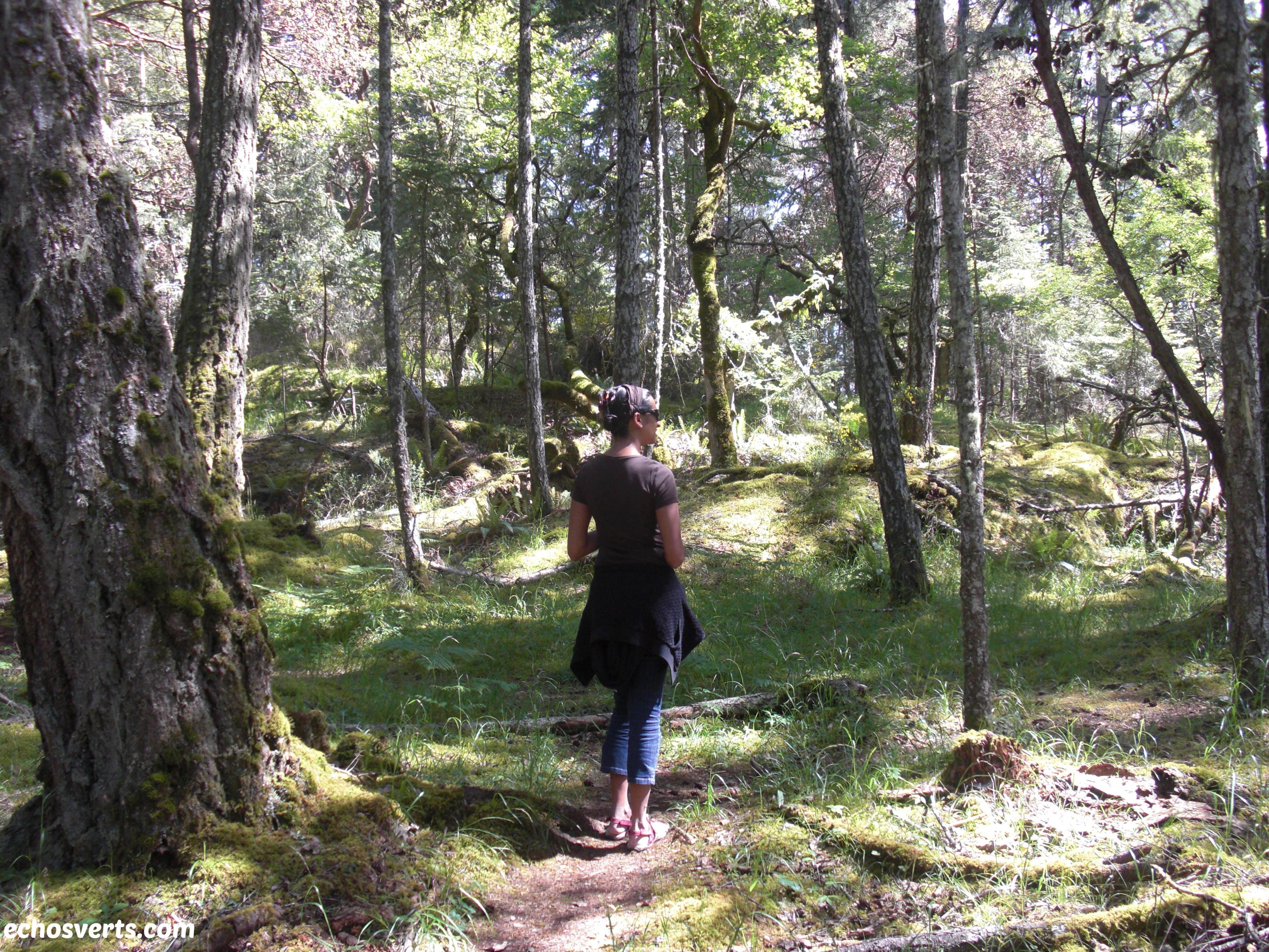 défi nature- copyright- échos verts- 2
