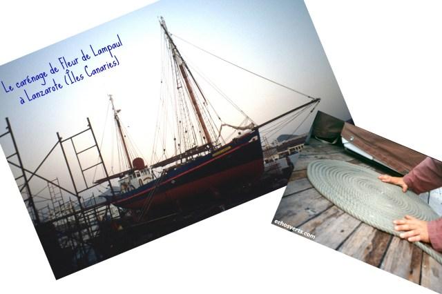 Carénage- Fleur de Lampaul- collage- copyright- échos verts