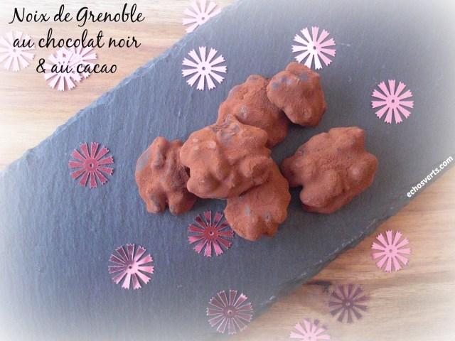Recette noix de Grenoble chocolat cacao- echos verts