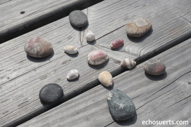 Mandala naturel echosverts.com