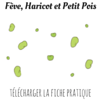 Fèves haricots petits pois