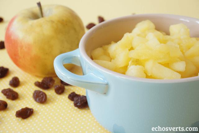Pommes raisins echosverts.com