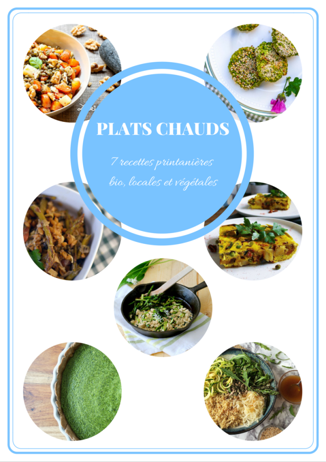 EBOOK- Plats chauds