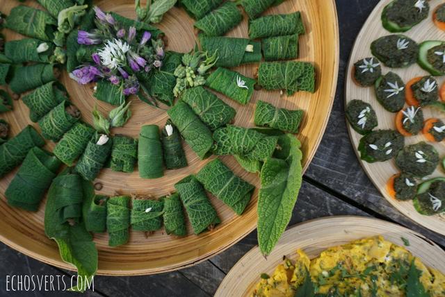 Reconnaissance et cuisine des plantes sauvages mon stage for Trouver un stage en cuisine
