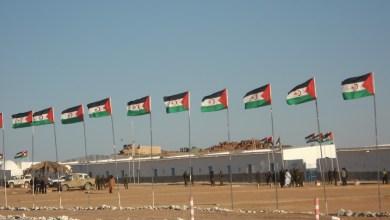 صورة متى يتوقف البرلمان الأوربي عن دعم المغرب المغتصب للأراضي الصحراوية ؟