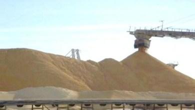 صورة شركة بريطانية تضع حدا لنشاطها في التجارة غير القانونية لفوسفات الصحراء الغربية