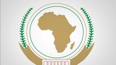صورة جنوب إفريقيا تندد بمنح إسرائيل صفة مراقب بالاتحاد الإفريقي