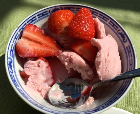 Erdbeer-Eis-selbstgemacht-mit-Eismachine-IMG_4332