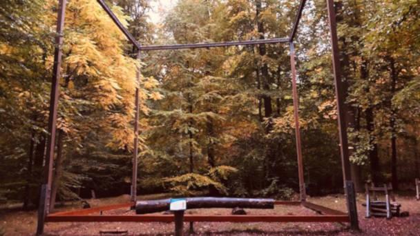 Der 1.000 m3 Kubis als Symbol für eine nachhaltige Waldbewirtschaftung eignet sich auch gut für Bancierübungen.