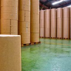Paper factory paper storage