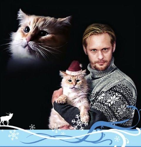 Alexander Skarsgård Cat Lover