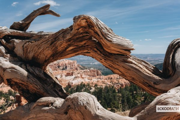 Partie 7 - Bryce Canyon-9-min