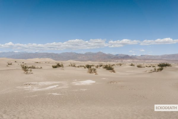 Partie 9 - Death Valley-13-min