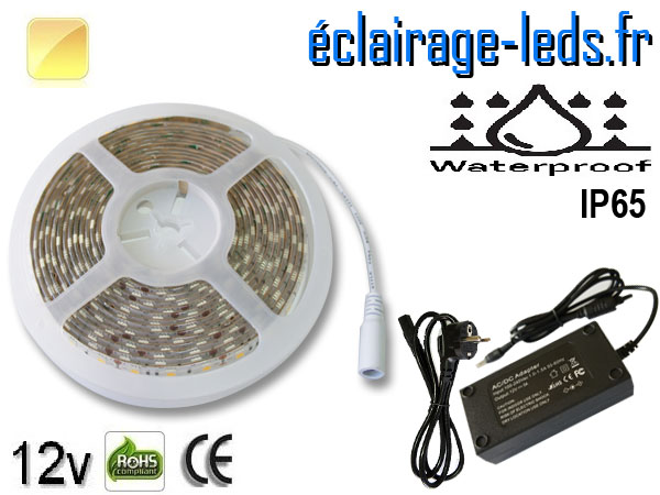 Kit bandeau LED 5m Blanc chaud IP65 smd5050 12v
