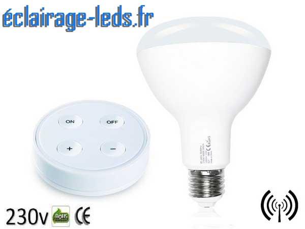 Ampoule LED E27 12W Luminosité & Température pilotable