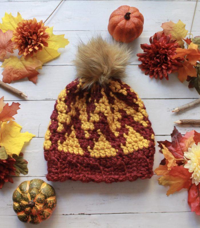 How to Crochet a Chevron Beanie Hat: Free Tapestry Crochet Pattern