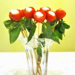From the heart … to the heart (Tomato and mozzarella bouquet appetizer)