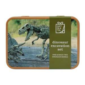 Dinosaur Excavation Set (Original)