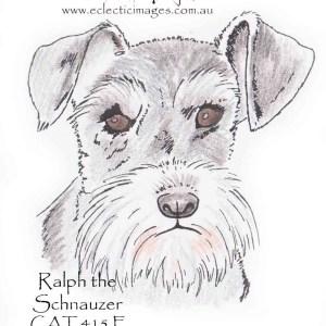 Ralph the Schnauzer