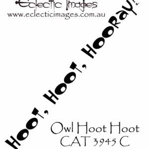 Owl Hoot Hoot