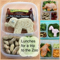 Lunches for the Zoo