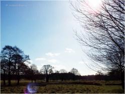 MonthlyMonthly Photo Challenge: The Changing Seasons 02