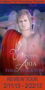 VBRT Wind's Aria Book Cover Banner copy