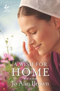 A Wish for Home (Secrets of Bliss Valley #1) by Jo Ann Brown