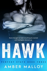 Hawk (Perfect Stats #3) by Amber Malloy
