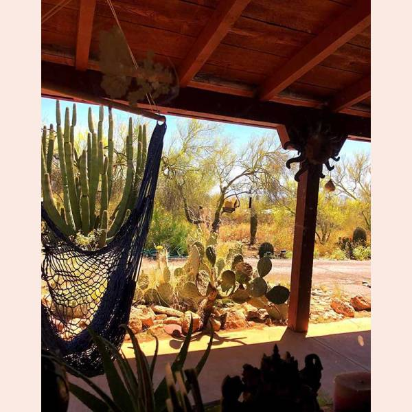 A swing chair overlooking the desert with Chrysalis Hammocks