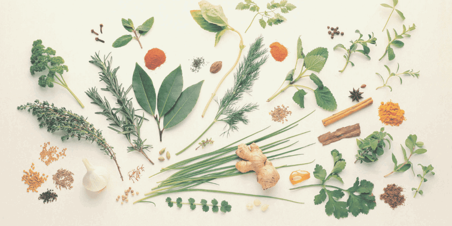 A pile of herbs laid out on a pale background. Leaves, roots, stems, bark.