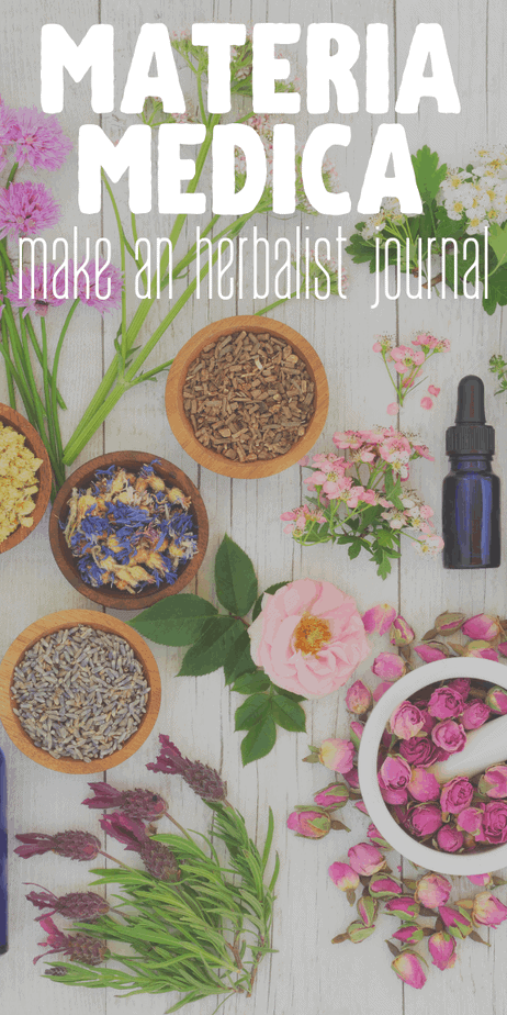 Are you learning about herbalism? Make your own compendium of materia medica. #herbalism #herbs #herbal #homeopathy #ayurveda #witchcraft #witch