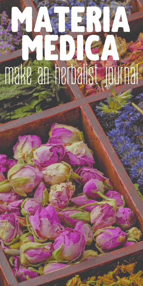 DIY materia medica journal template. #herbalism #herbs #herbal #homeopathy #ayurveda #witchcraft #witch