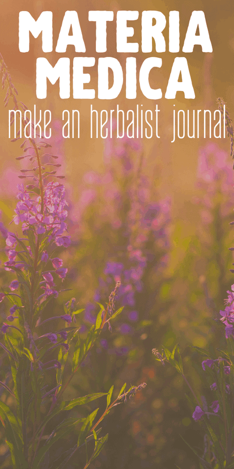 Learn how to DIY your own materia medica to store your herbalism information. #herbalism #herbs #herbal #homeopathy #ayurveda #witchcraft #witch