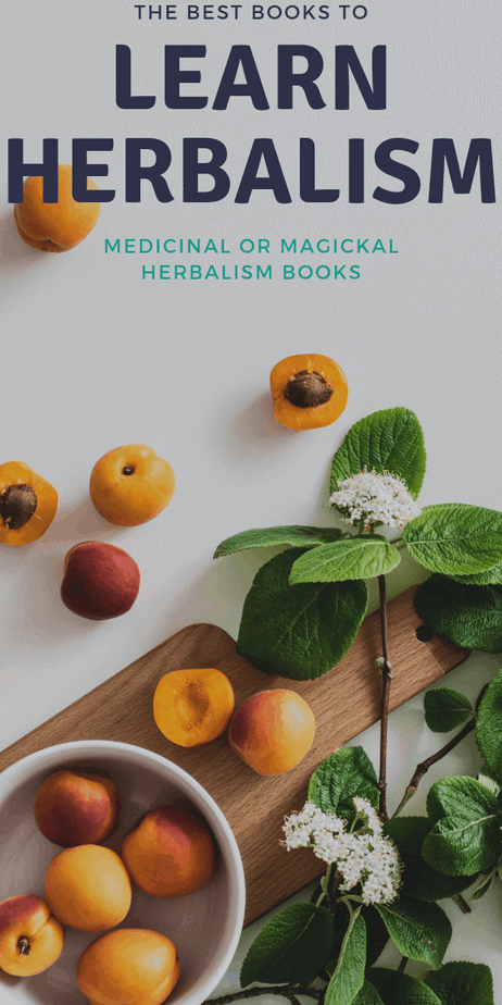 Find out how to learn herbalism with these incredible herbal books. #herbalism #herbalist #books #reading #book #toread #witchcraft #witch #pagan #wicca #occult #wiccan #paganism