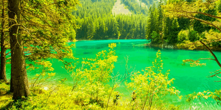 An intensely colorful scene with a green blue lake and bright leaves
