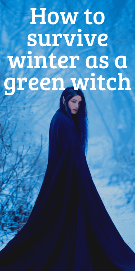 Activities for green witches during winter. Yule gift ideas, gardening tips for winter, green witchcraft when it's snowy outside. How to be surrounded by real plants even in the dead of winter. #yule #witch #greenwitch #witchcraft #christmas #pagan #paganism #wicca #garden #gardening #wreaths #christmastree #yuletree #poinsettia #herbaltea