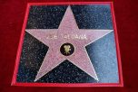 HOLLYWOOD, CA - MAY 03: View of Zoe Saldana's star at the Zoe Saldana Walk Of Fame Star Ceremony on May 3, 2018 in Hollywood, California. (Photo by Alberto E. Rodriguez/Getty Images for Disney)