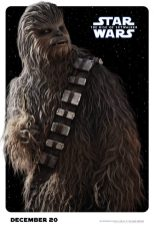 Star Wars: The Rise of Skywalker - Chewbacca (Joonas Suotamo)