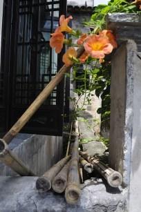 Chiny_20090719-111551
