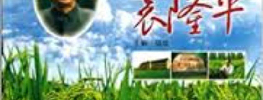 中华传统云端传播 袁隆平事迹弘扬海外