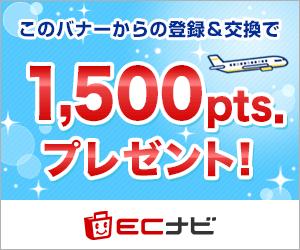 陸マイラー始めるならECナビ1,000ポイントプレゼント!