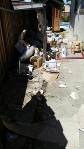 Before the junk removal service the area was littered with paper