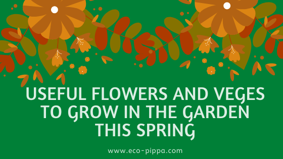 Useful flowers and veges to grow in the garden this Spring